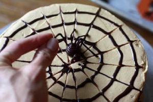 Как украсить торт паутинкой из шоколада 3