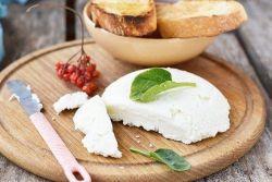 како направити сулугуни сир код куће