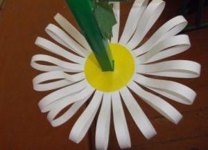 jak zrobić papierową stokrotkę 16