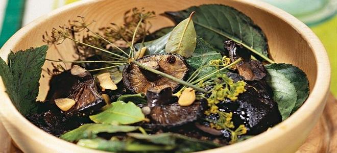 Marynowanie czarnych grzybów