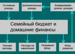 struktura družinskega proračuna