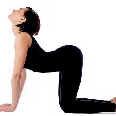 prostownica do mięśni kręgosłupa