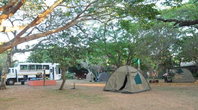 Camp Bush Baby Lodge