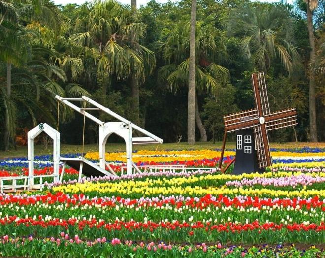 Цветочный парк Кагосима