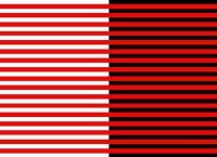 илузије перцепције8