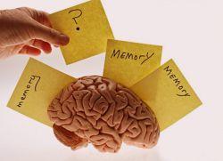 vrste figurativne memorije
