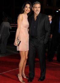 Журналисты внимательно изучают фигуру мисс Клуни, пытаясь разглядеть живот