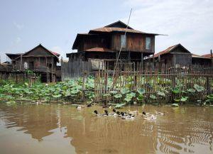 Бамбуковые дома на озере Инле