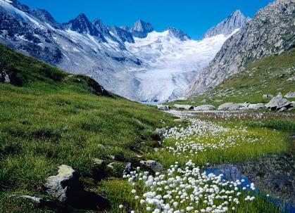 Zanimiva dejstva o Švici 1