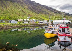 Деревня Suðureyri