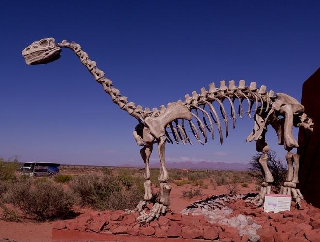 Останки динозавров