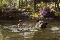 Билл Мюррей, озвучивший медведя Балу, не участвовал в фотосессии