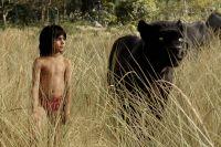 Маугли играет 10-летний индийский актер Нил Сетхи