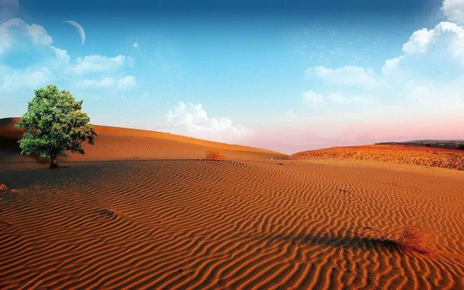 Своим красноватым цветом пески обязаны высокому содержанию оксида железа