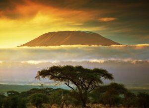 Килиманджаро на закате