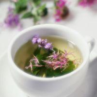 Кипарски чај користи и штети