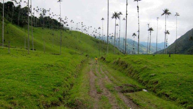 Пешая прогулка по долине Кокора