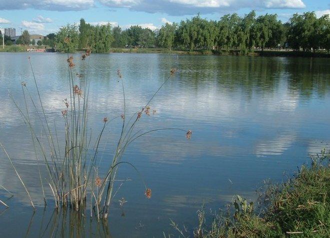 Голубые озера парка