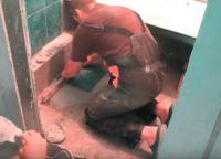 Постављање плочица у купатилу52