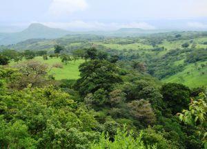 Панорама окрестностей Либерии