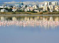 Соляное озеро Ларнака
