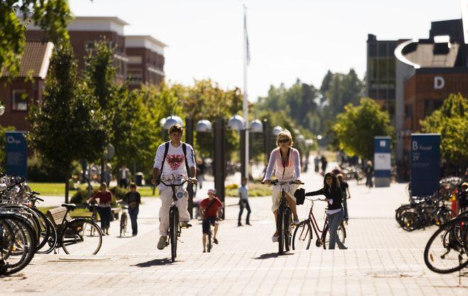 Велосипед - самый популярный вид транспорта в Линчепинге