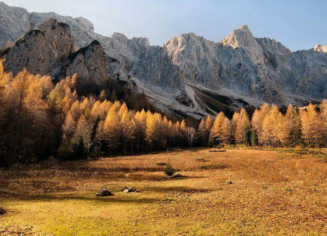 Логарска долина в осеннее время