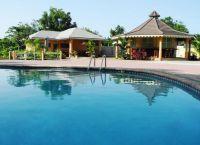 Бассейн в Pimento Lodge Resort