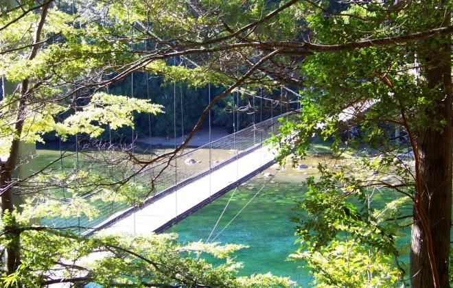 Натяжные мосты в парке