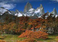 Растительный мир национального парка