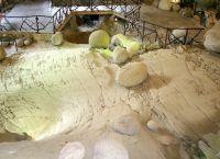 Ледниковый сад