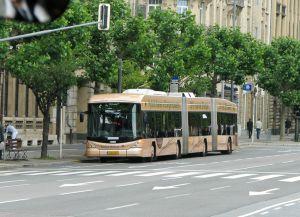 Основной вид общественного транспорта — автобусы