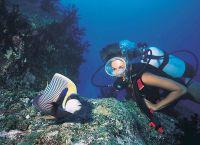 Флора и фауна подводного мира