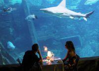 Романтический вечер в аквариуме