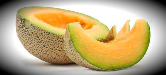 Melon dla kobiet w ciąży