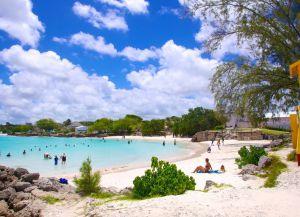 Райский уголок Miami Beach
