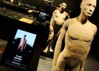 Экспонаты Галереи Человечества (The Gallery of Humankind)