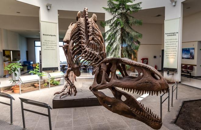 Палеонтологический музей Эгидье Феруглео