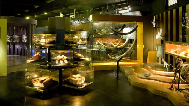 Woo Seok Heon Natural History Museum