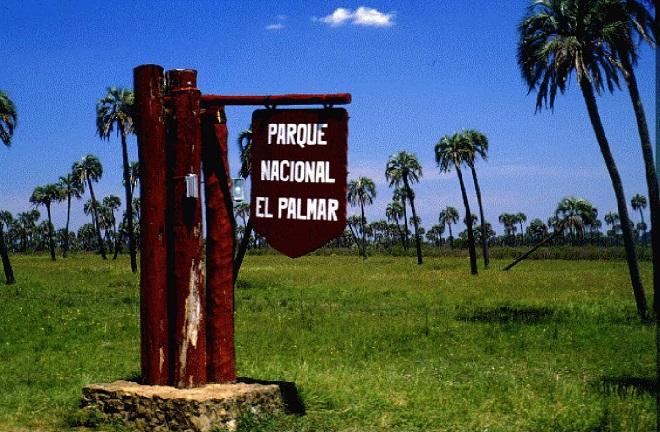 Эль-Пальмар