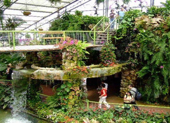 Огромнейший парк Утопия