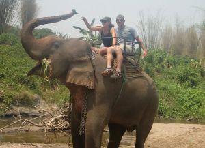 Туристы в Лагере слонов