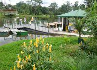 Нуэва-Лоха - парк Lago Agrio