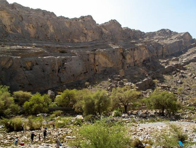 Вади Тануф