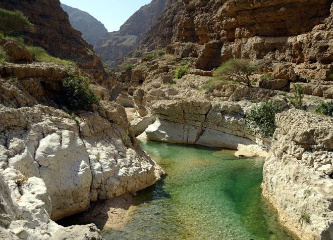 Природа Омана