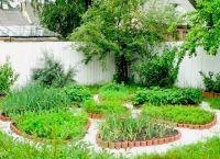 Ozdobny ogród3