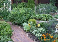 Ozdobny ogród4