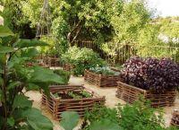 Ozdobny ogród5