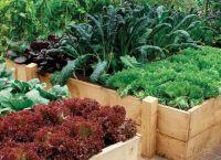 Ozdobny ogród 7