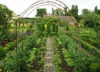Ozdobny ogród9